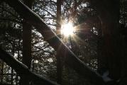 Луч света втемном царстве…