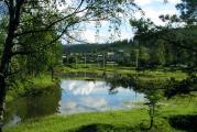 Озеро вместо лужайки