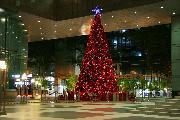"""Рождественская елка в Риверсайде. Из серии """"Ночной Сингапур"""""""