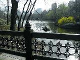 В Центральном парке (9)