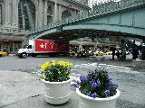 Прогулки по Манхэттену (8)