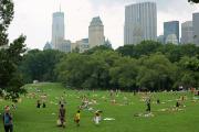 Теплый денёк в Центральном парке
