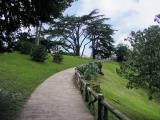 Парк Буте-Шамон