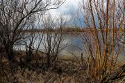На Шелеховских озёрах