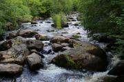 Река Олха