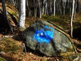 Нашествие синих котов...