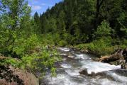 Река Большая Осиновка